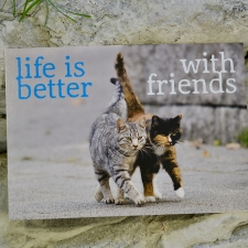 Postkaart sõnumiga (Life is better with friends)