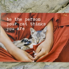 Postkaart sõnumiga (Be the person your cat thinks...)