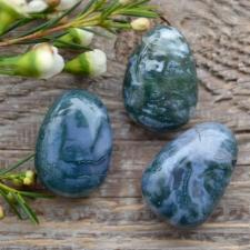 Auguga kivi / ripats - sammalahhaat