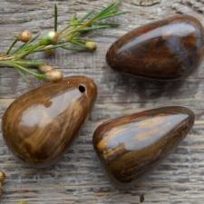 Auguga kivi / ripats - kivistunud puit
