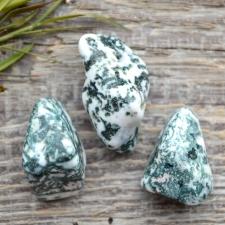 Auguga kivi / ripats - Puuahhaat