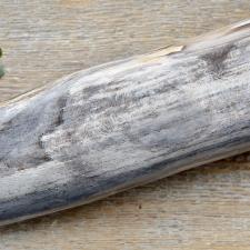 Kivistunud puit (5x7.5x23cm)