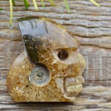 Kristallpealuu / kolp - Ammoniit (27g)