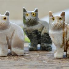 Kass - Steatiit ehk seebikivi