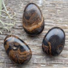 Auguga kivi / ripats - Stromatoliit