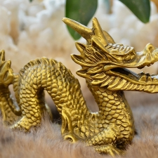 Draakon (150x110x70mm)
