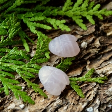 Ripats / Auguga kivi - Roosakvarts põrnikas